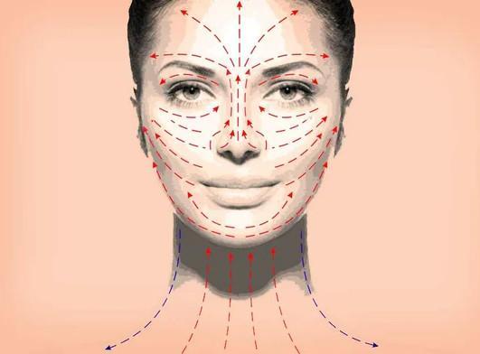 Линии правильного нанесения косметики на зоны лица и шеи