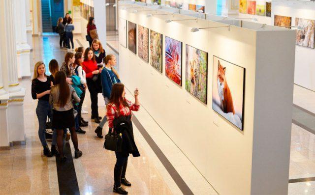 Посещать выставки