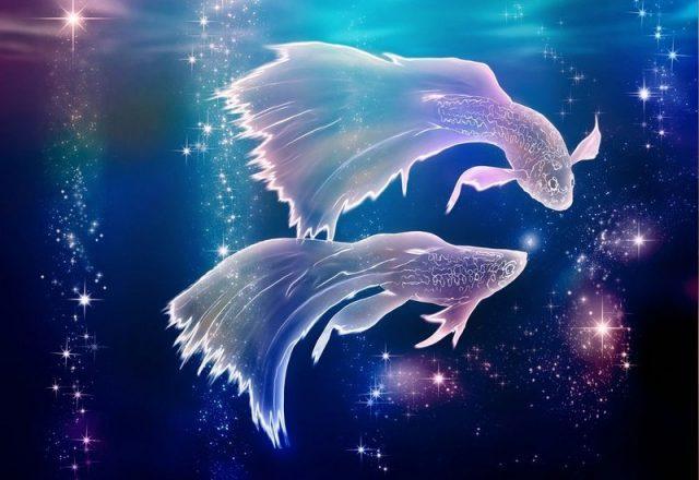 Отношения с едой Рыбы