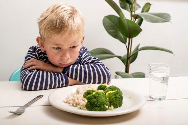 Что делать, если ребенок плохо ест, как заставить