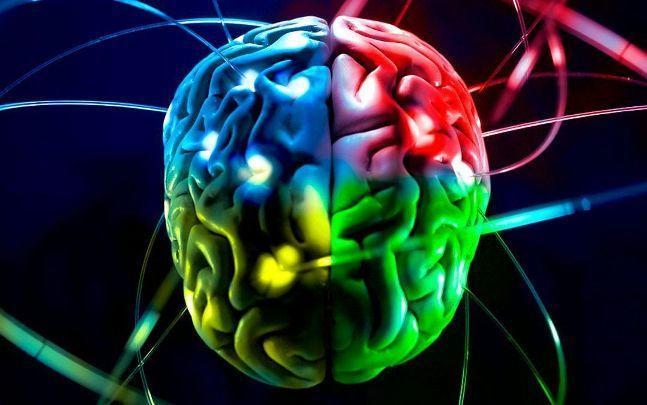 Работа нашего мозга