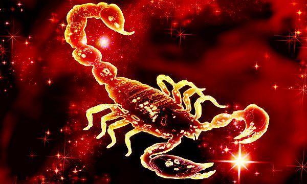 зодиак Скорпион