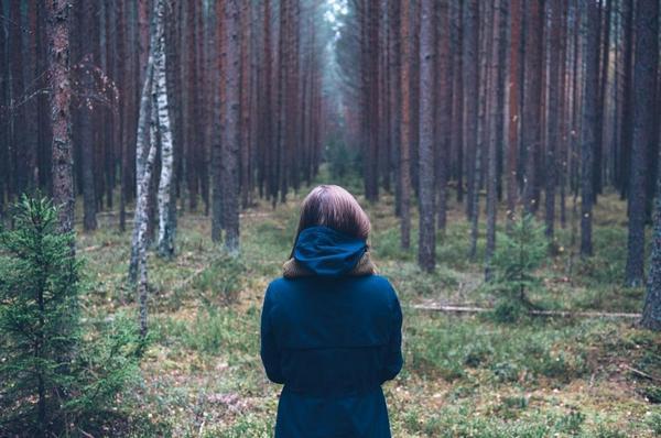 заблудиться в лесу