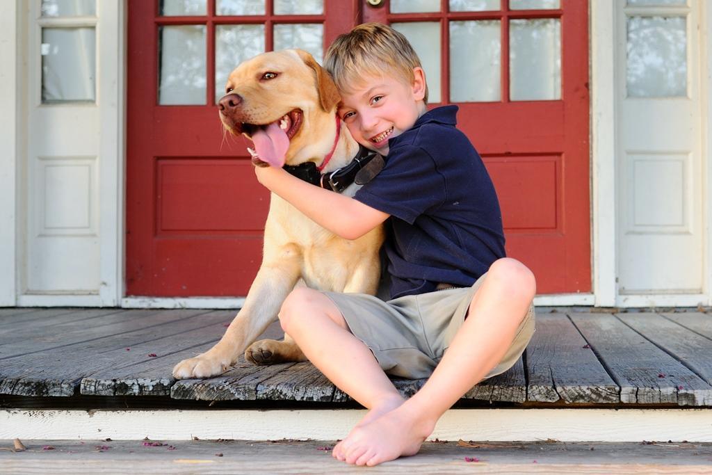 Что нужно подготовить для собаки: чек-лист для новичков