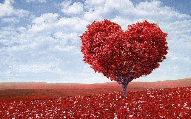 рак в любви