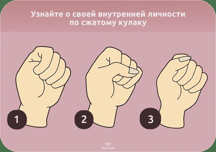 тест-кулак