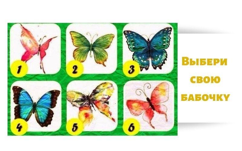 тест бабочка