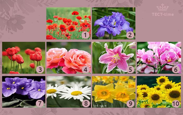 тест цветок