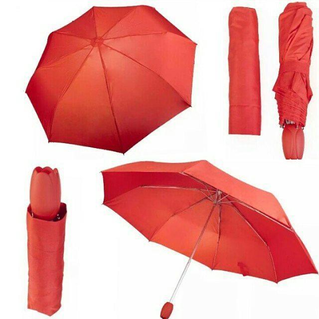Зонт-тюльпан