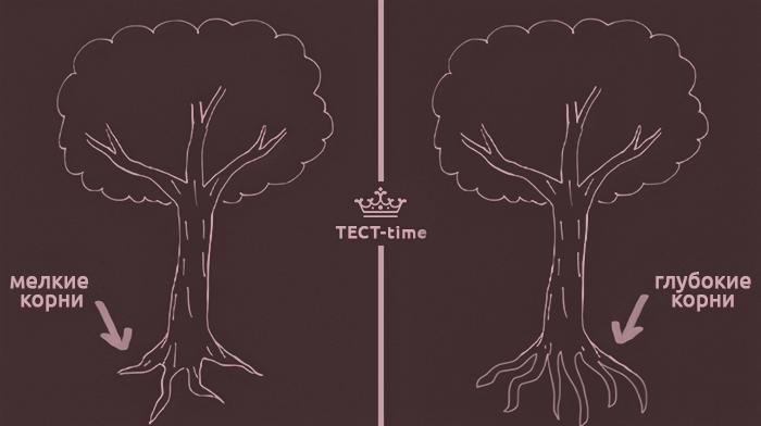 тест дерево 2