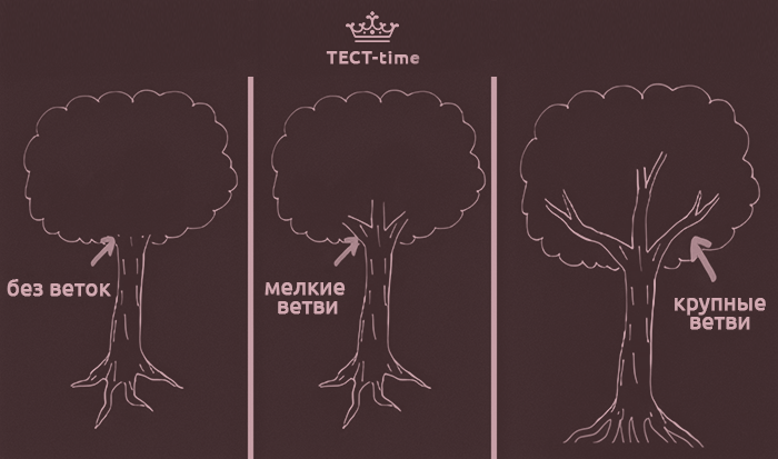 Ветви