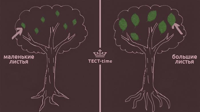 Крона и листва