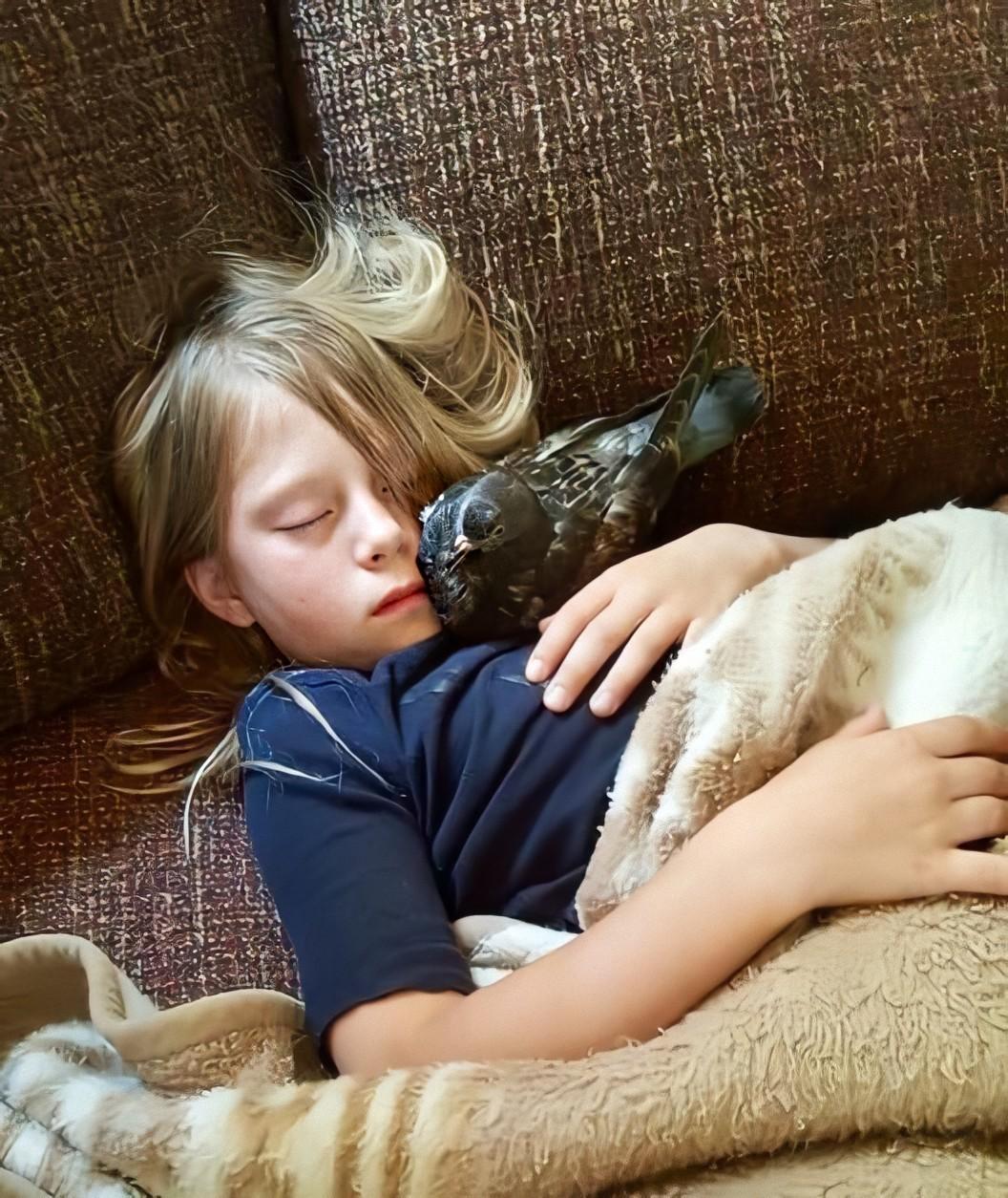 Особая связь: 20 фотографий, доказывающих, что животное может стать настоящим членом семьи