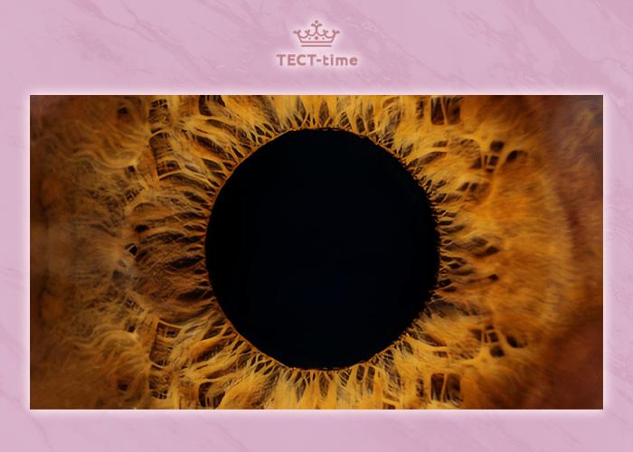 Тест на внимательность: сможете ли вы угадать 10 обычных вещей по их макрофотографиям?