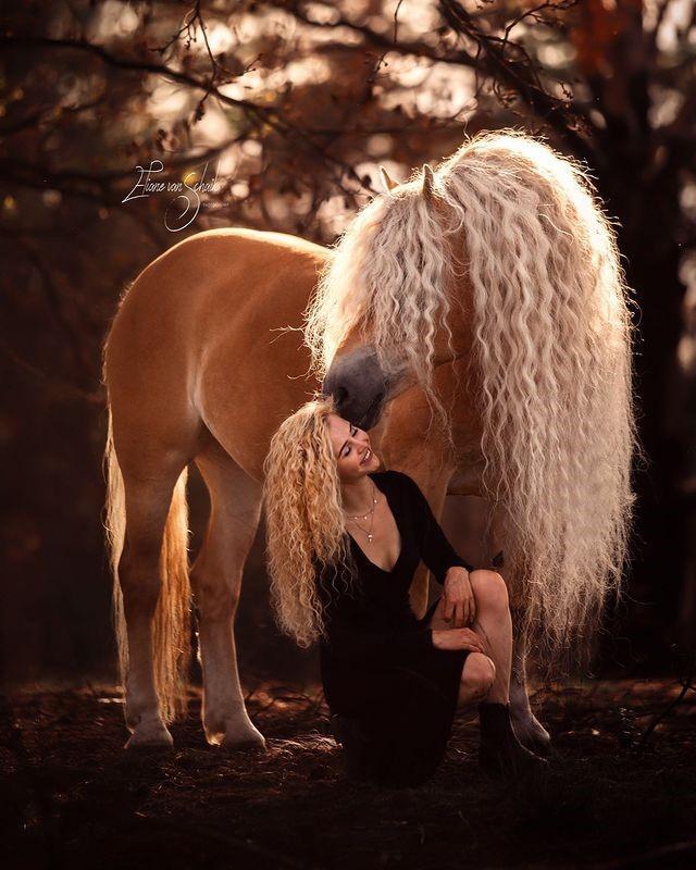 Девушка поделилась фотографиями со своим величественным конем словно из сказки – и они похожи как близнецы